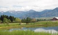 Elk Grove Subdivision Pond - Brett Fagan Photo