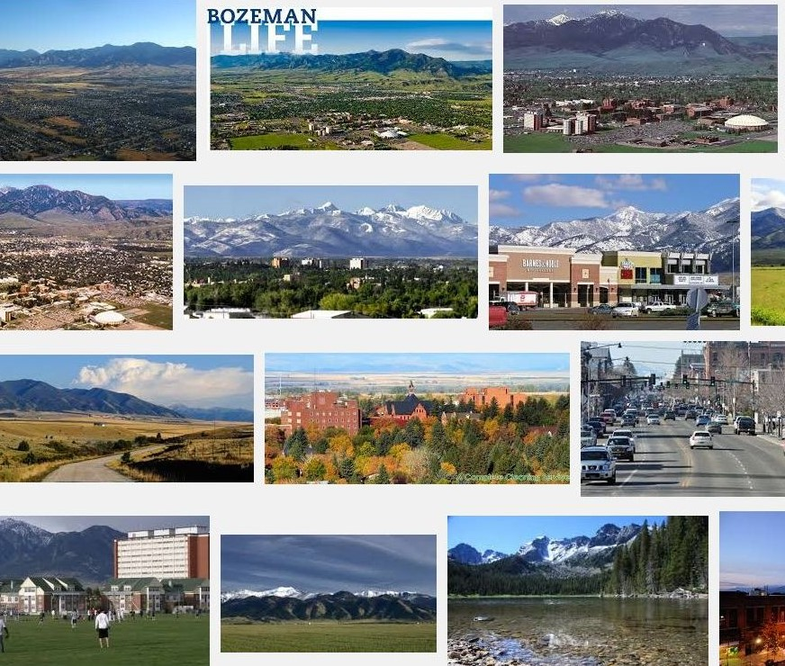 Bozeman Real Estate Report - Life in Bozeman - Taunya Fagan - Icon